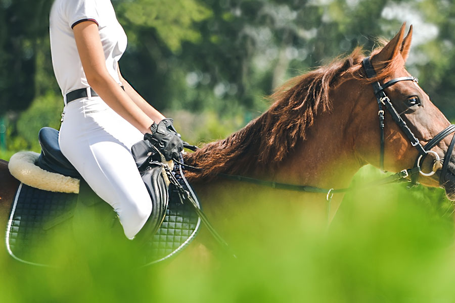 Aiken Insurance - Woman in White Riding Brown Horse